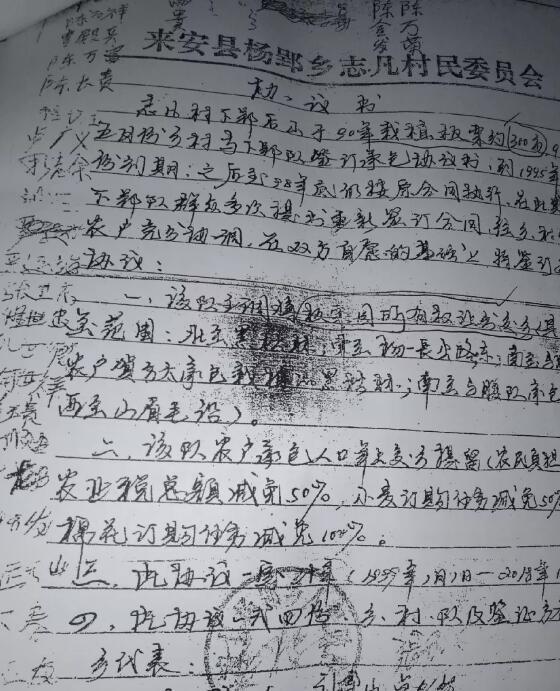 请求上级人民政府依法追究,半塔镇人大副主席徐龙华